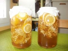 fleurs de sureau, limonade